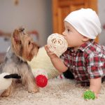Preparing Your Pet For New Baby